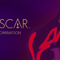 Il punto sulle Nomination Oscar 2019